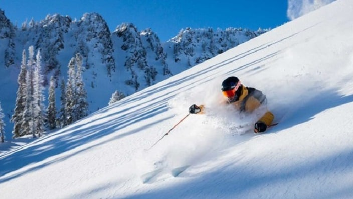 snow-basin-skier-powder-1